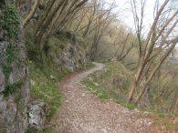 Gita sospesa MONTE CIVILLINA (m 962) e MONTE SINGÌO (m 834)