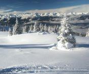 Monte Pin (m 2420)