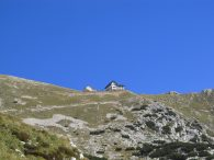 Cima Telegrafo (m 2200)
