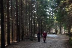19-02-20 Monte Novegno