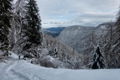 2018-02-03 Monte Pin