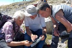 Cima Dodici e Monte Ortigara 9 giugno 2019